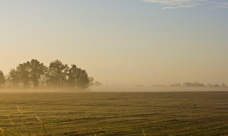 农田横向密苏里早晨 免版税库存照片