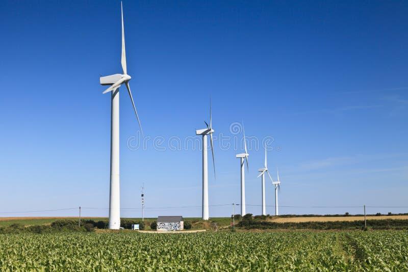 农田的,布里坦尼,法国风力场 库存照片