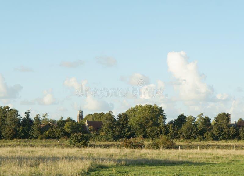 农田视图在荷兰 免版税库存图片