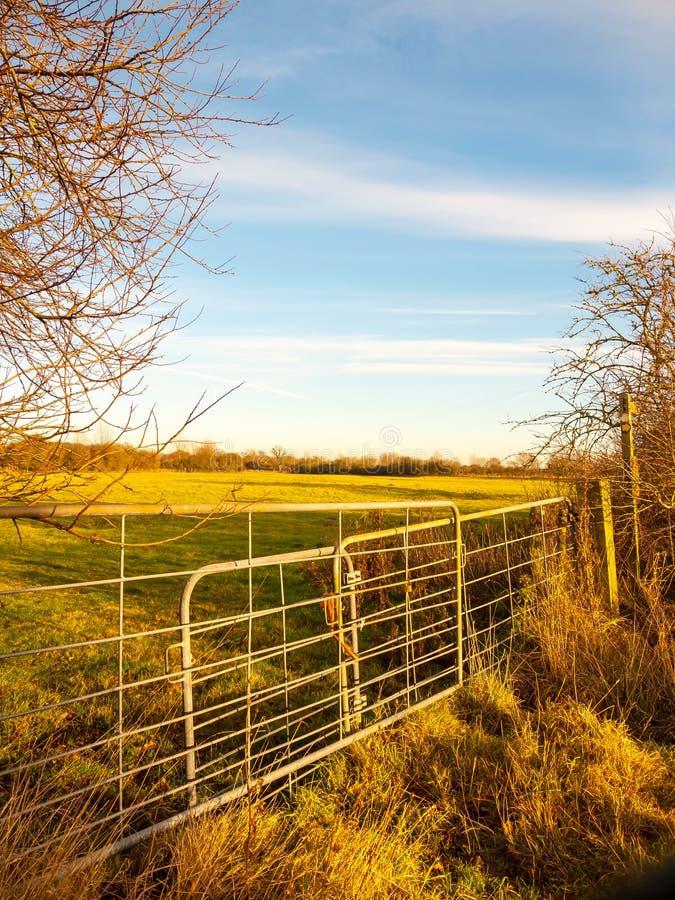 农田金属农厂门领域关闭了锁着的农业自然 库存图片