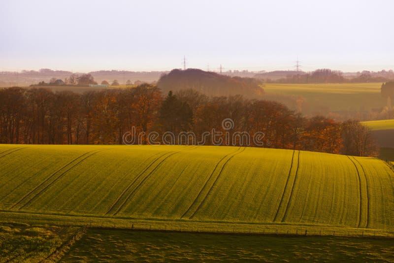 德国欧洲的柔和绵延山农田 库存图片