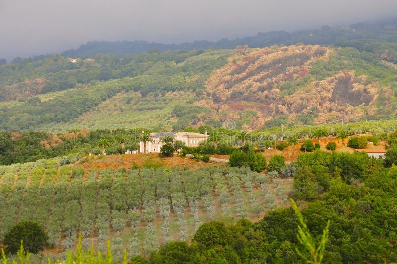 农舍在皮亚诺波利,卡拉布里亚 免版税库存照片