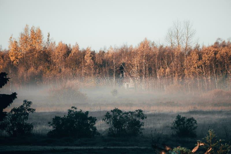 农舍在秋天森林里 免版税库存图片