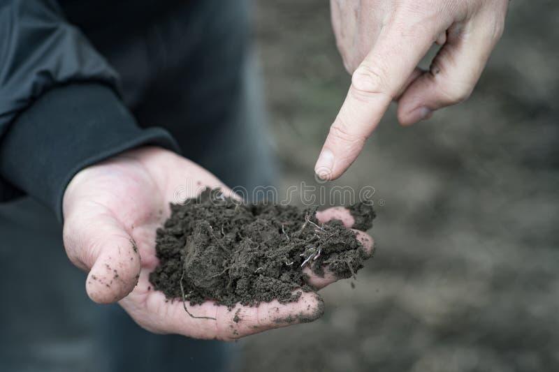 农艺师和农夫谈论有机fertil的介绍 免版税库存图片