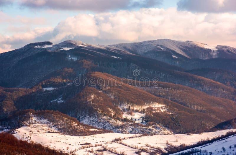 冬天下午的可爱的乡下 库存照片