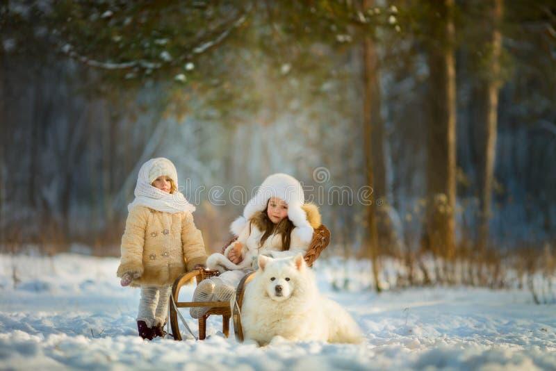 冬天与萨莫耶特人狗的儿童画象 免版税库存图片
