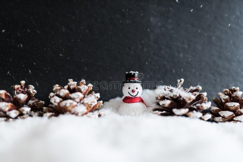 冬天与雪人和锥体的圣诞节装饰 库存照片