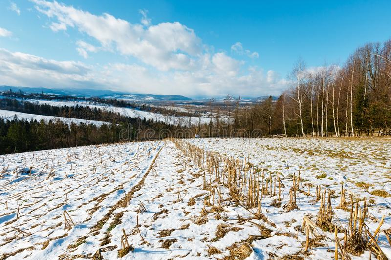 冬天与领域、树丛和村庄的山风景 库存照片