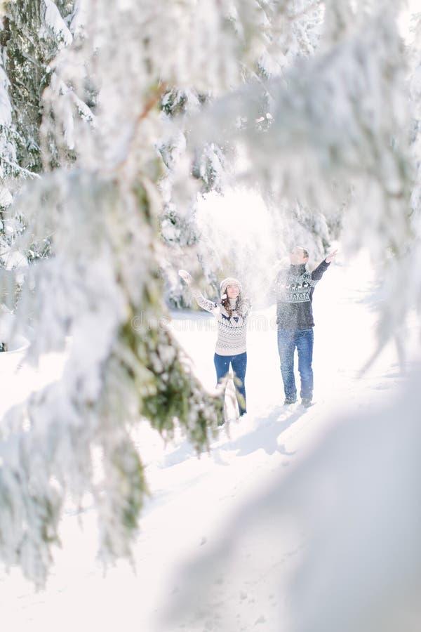 冬天乐趣夫妇嬉戏一起在寒假假期时外面在雪森林里 免版税库存照片