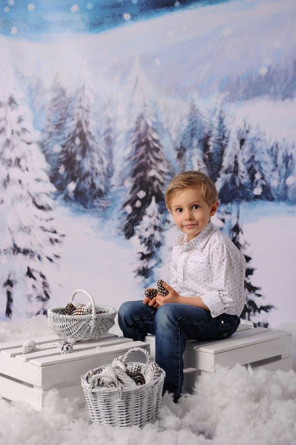 冬天儿童的会议 孩子收集锥体入篮子 免版税库存照片