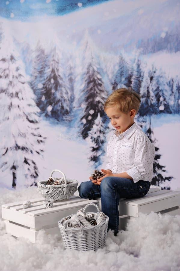 冬天儿童的会议 孩子收集锥体入篮子 库存照片