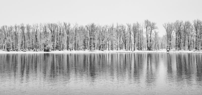 冬天全景风景 免版税库存照片