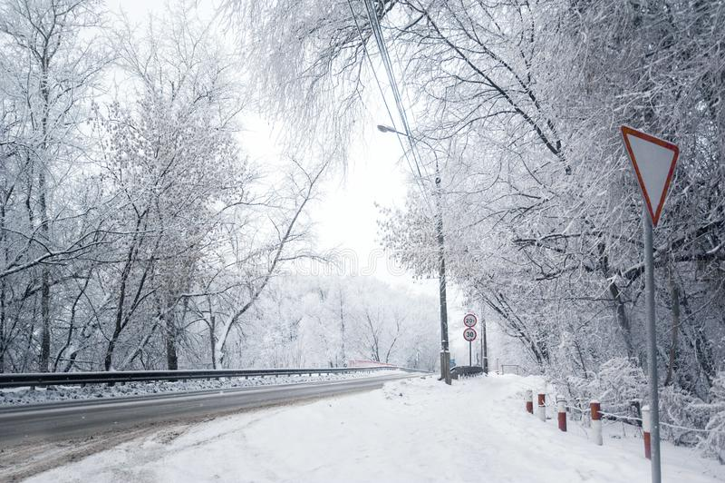 冬天冷淡的路和树 库存照片