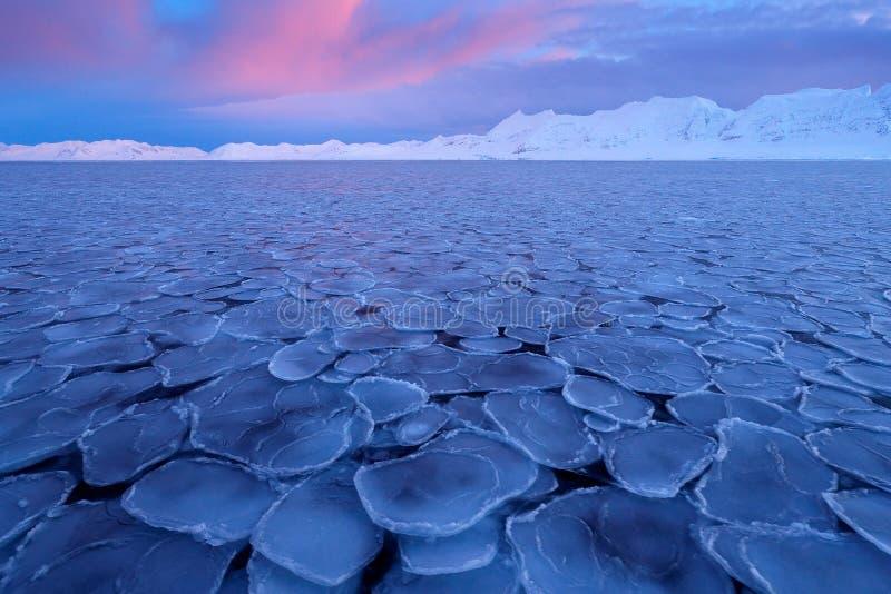 冬天北极 白色多雪的冬天山,与海的蓝色冰川冰前景的,斯瓦尔巴特群岛,挪威 冰在海洋 冰山t 免版税库存照片