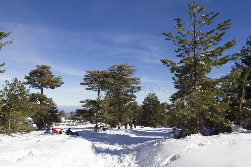 冬天北部的Etna 免版税库存照片