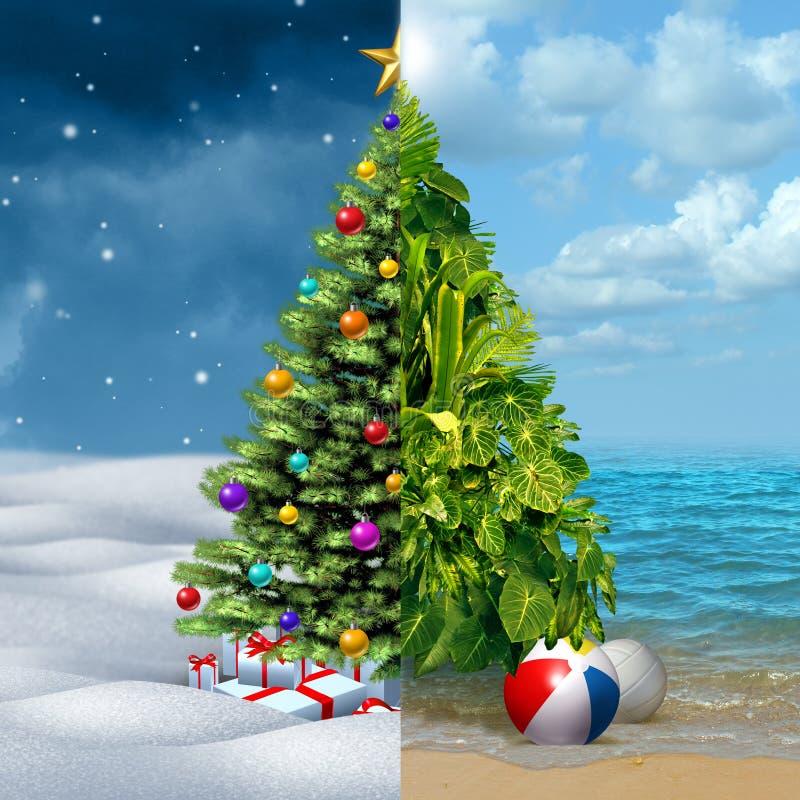 冬天和热带圣诞节 向量例证