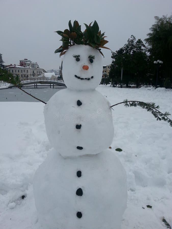 冬天和雪人, 1月 免版税图库摄影