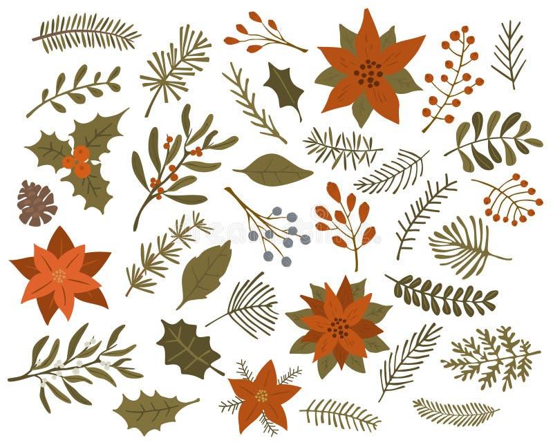 冬天圣诞节叶子枝杈分支红色莓果集合,被隔绝的传染媒介 免版税图库摄影
