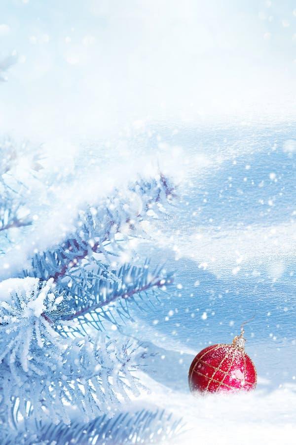 冬天圣诞节艺术背景 与圣诞装饰的蓝色云杉在白雪在冬天森林里 免版税库存照片