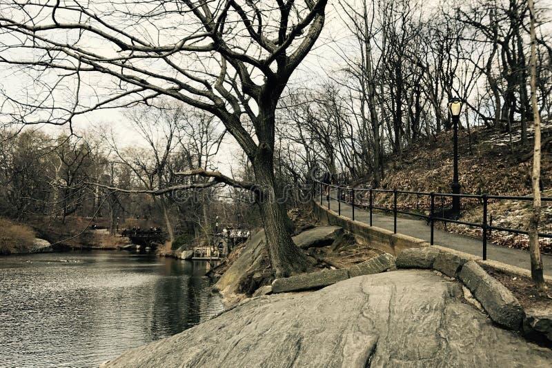 冬天在中央公园曼哈顿纽约 图库摄影