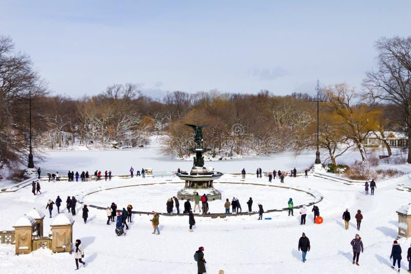 冬天在中央公园,纽约 图库摄影