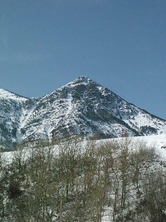 冬天在山的` s接触 库存图片