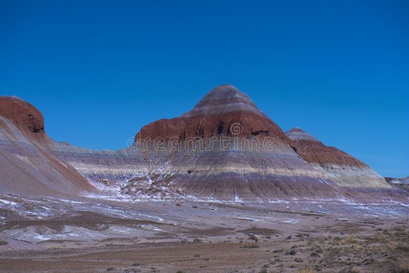 冬天在彩绘沙漠 免版税库存照片