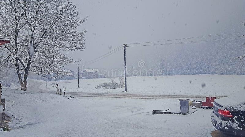 冬天在波斯尼亚 免版税库存图片