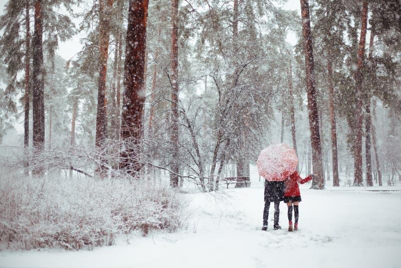 冬天在红色的爱情小说 图库摄影