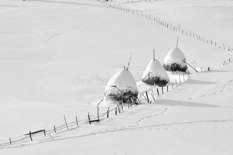 冬天在罗马尼亚,干草堆在特兰西瓦尼亚村庄 免版税库存图片