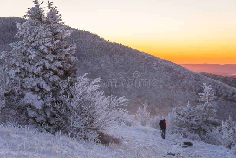 冬天在蓝岭山脉6 免版税库存照片