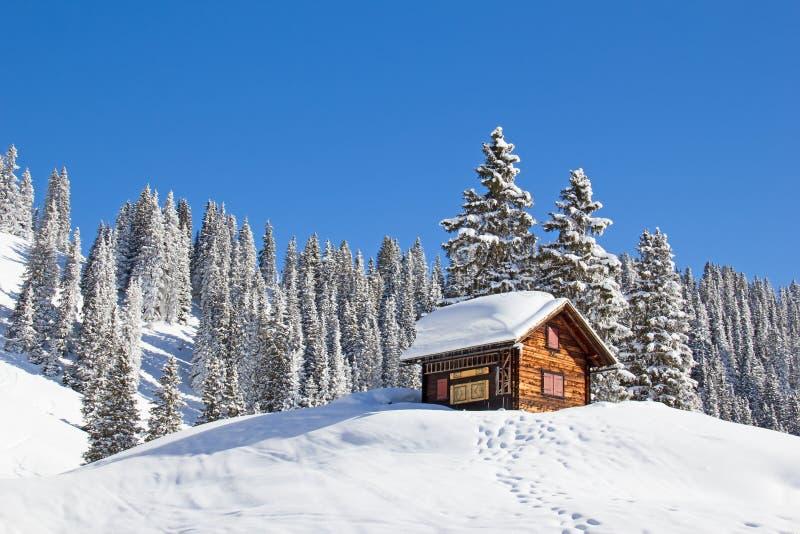 冬天在阿尔卑斯 库存图片