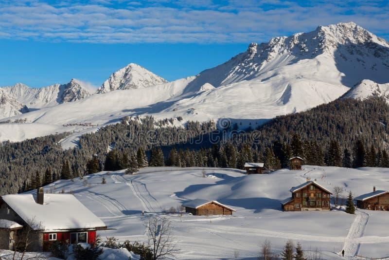 冬天在Arosa (Langlauf) 免版税库存照片