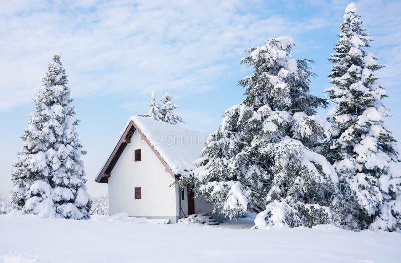 冬天场面、农村房子和雪松树 库存图片