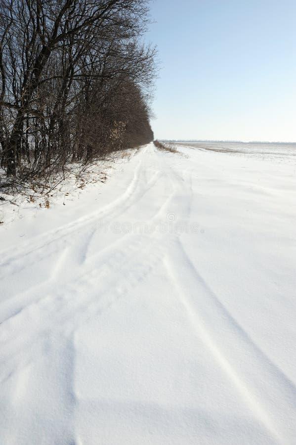 冬天域 免版税库存图片