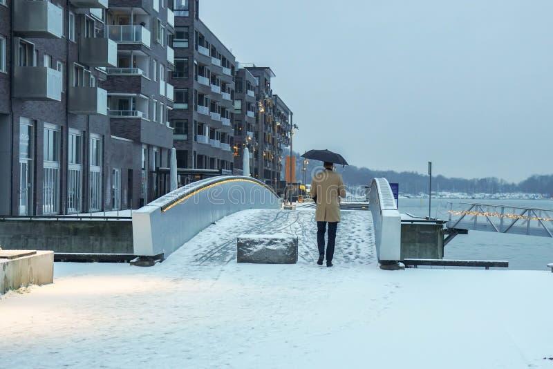 冬天外套的人有伞的在多雪的天在奥斯陆,挪威 免版税库存图片