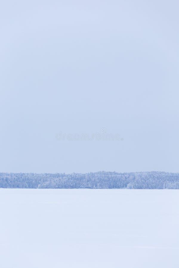 冬天多云天湖风景 图库摄影