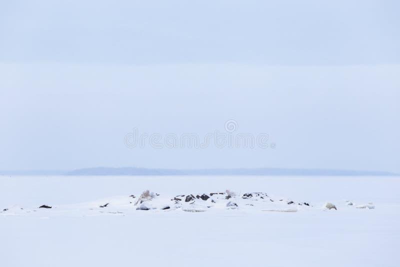 冬天多云天湖风景 库存照片