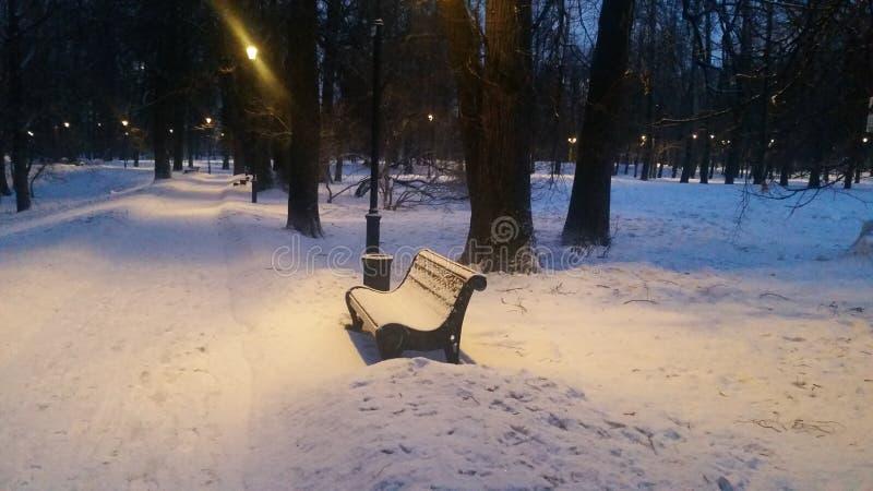 冬天夜间在公园 意想不到的浪漫大气 库存照片