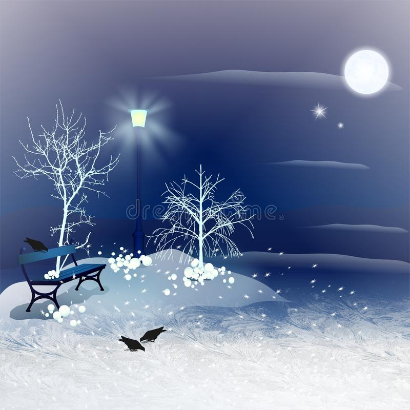 冬天夜 皇族释放例证