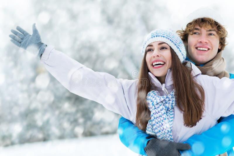 冬天夫妇 免版税库存图片