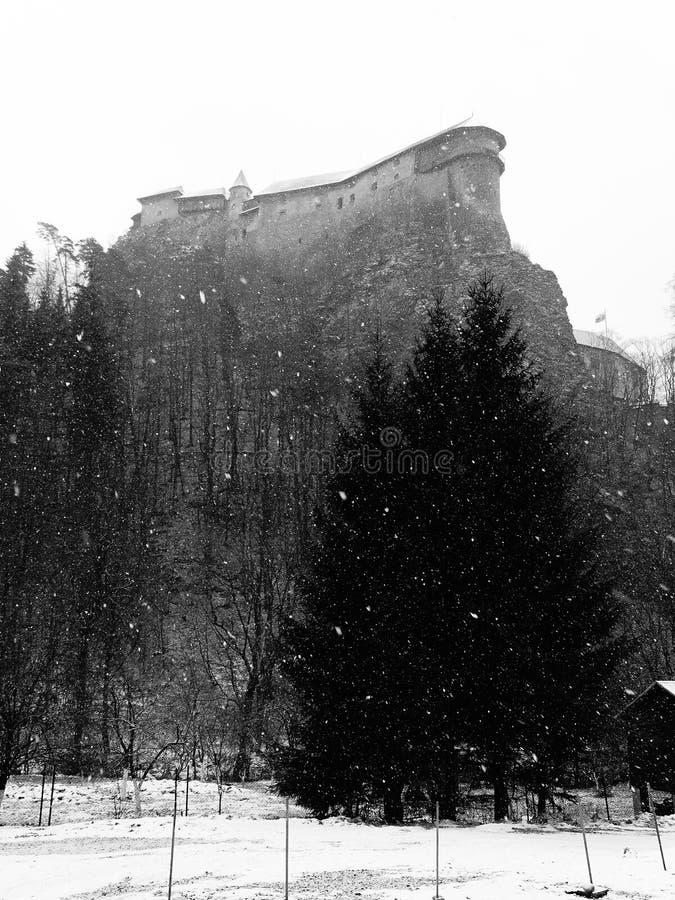 冬天奥拉瓦河城堡 免版税图库摄影