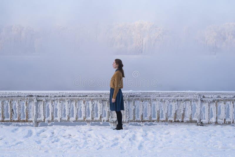 冬天妇女 图库摄影