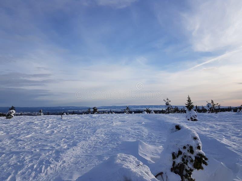 冬天妙境 与稀薄的云彩的好的天空 免版税图库摄影