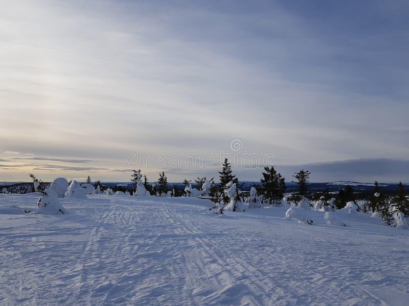 冬天妙境 与稀薄的云彩的好的天空 库存照片