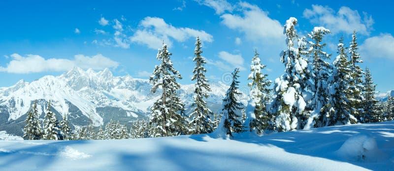 冬天山全景。 库存照片