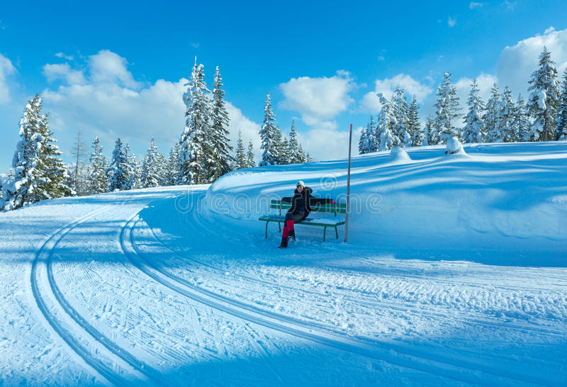 冬天山冷杉森林风景和妇女长凳的。 库存图片