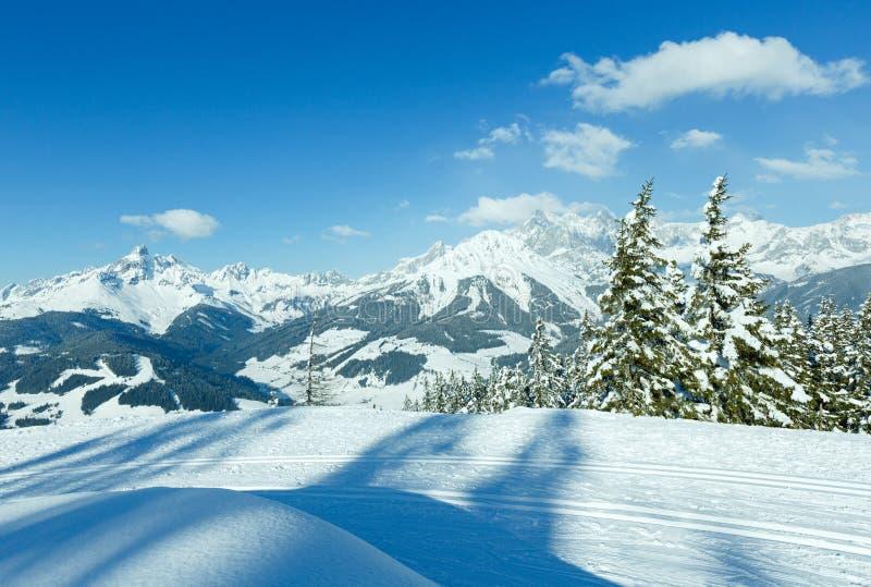 冬天山冷杉森林风景 库存照片