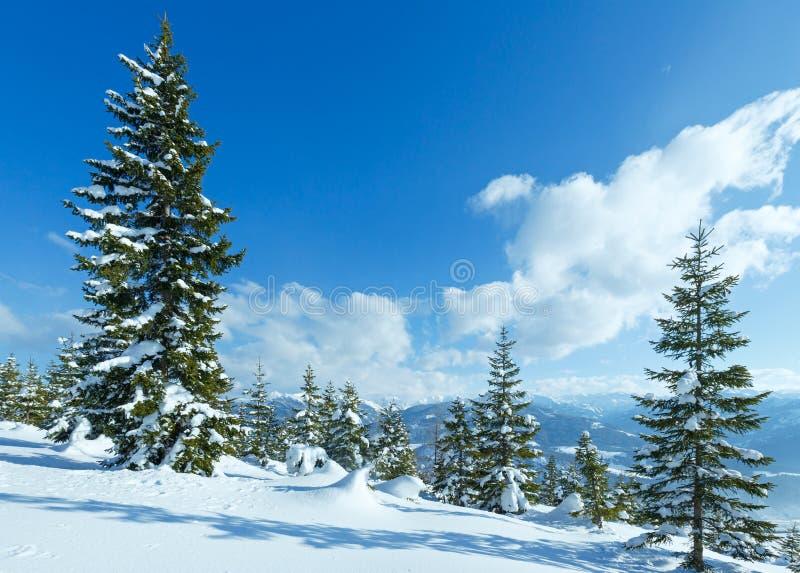 冬天山冷杉森林风景 免版税图库摄影