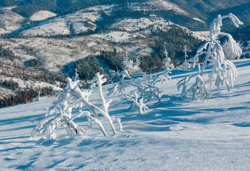 冬天山多雪的风景 免版税图库摄影